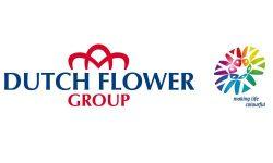 Dutch Flower Group